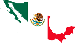 mexican flag in the form of the country